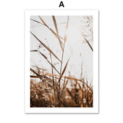 'Sky Park' Cotton Canvas Print