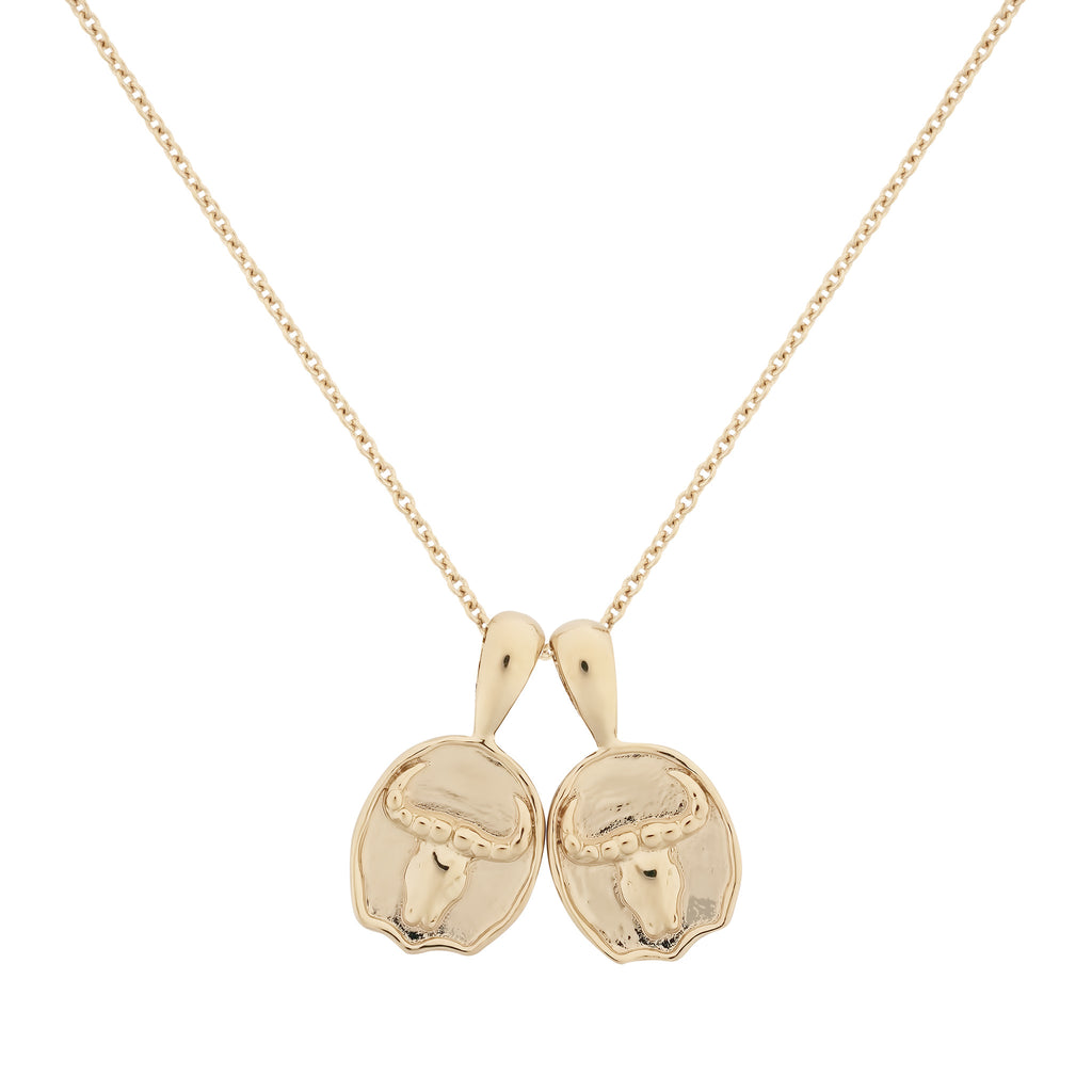 Taurus II Necklace | 2 Small