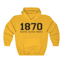 Load image into Gallery viewer, Kappa Alpha Theta Founding Year Hoodie (Gold)