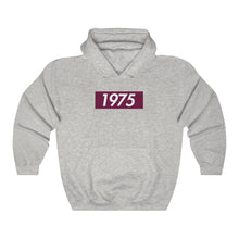 Load image into Gallery viewer, Grey Lambda Theta Alpha 1975 Supreme Box Logo Hoodie