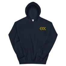 Load image into Gallery viewer, Theta Chi Official Letters Embroidered Hoodie (Navy and Gold)