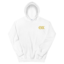 Load image into Gallery viewer, Theta Chi Official Letters Embroidered Hoodie (White and Gold)