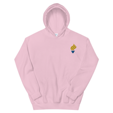Load image into Gallery viewer, Alpha Phi Omega Torch Logo Embroidered Hoodie (Light Pink)