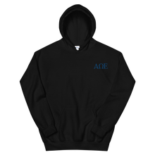 Load image into Gallery viewer, Alpha Omega Epsilon Official Letters Embroidered Hoodie (Black)