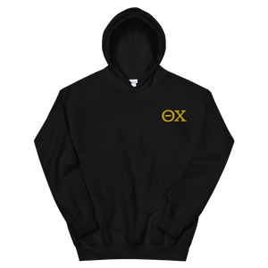 Theta Chi Official Letters Embroidered Hoodie (Black and Gold)