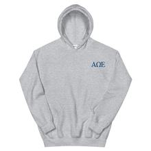 Load image into Gallery viewer, Alpha Omega Epsilon Official Letters Embroidered Hoodie (Sport Grey)