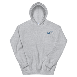Alpha Omega Epsilon Official Letters Embroidered Hoodie (Sport Grey)