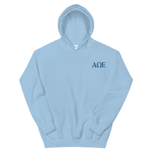 Load image into Gallery viewer, Alpha Omega Epsilon Official Letters Embroidered Hoodie (Light Blue)
