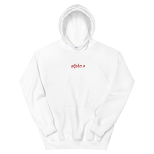 "Alpha Omicron Pi ""alpha o"" Embroidered Script Hoodie"