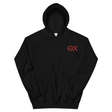 Load image into Gallery viewer, Theta Chi Official Letters Embroidered Hoodie (Black and Red)