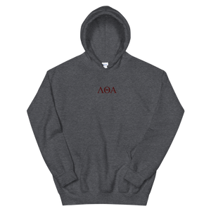Lambda Theta Alpha Official Letters Embroidered Hoodie