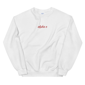"Alpha Omicron Pi ""alpha o"" Embroidered Script Sweatshirt"