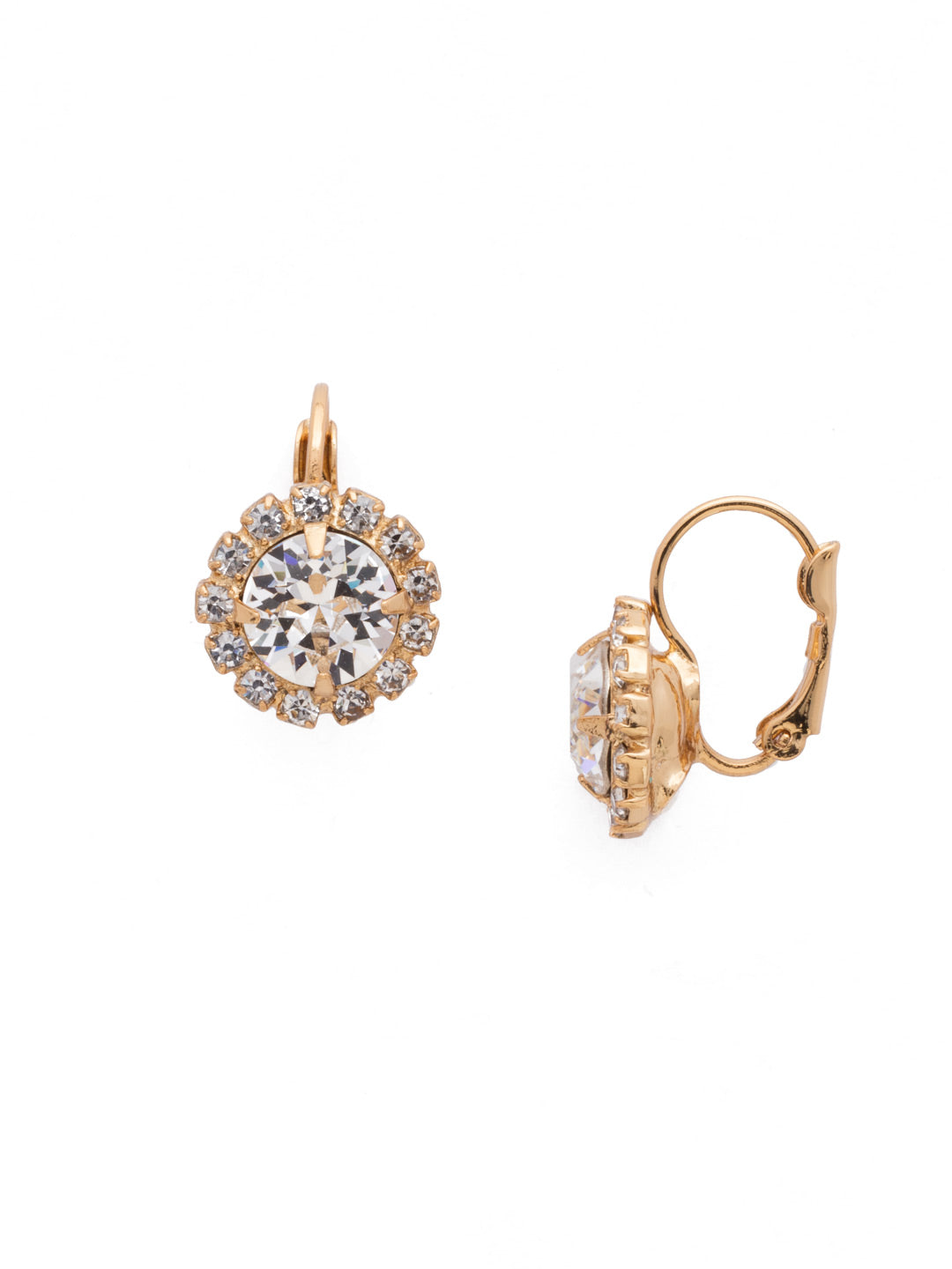 Haute Halo Stud Earrings - EDL10BGCRY