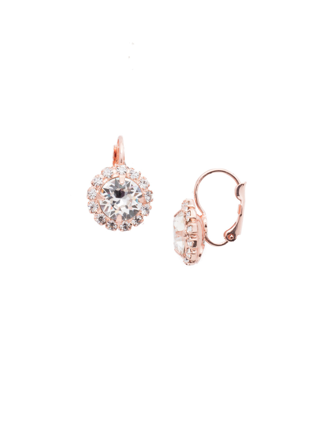 Haute Halo Stud Earrings - EDL10RGCRY