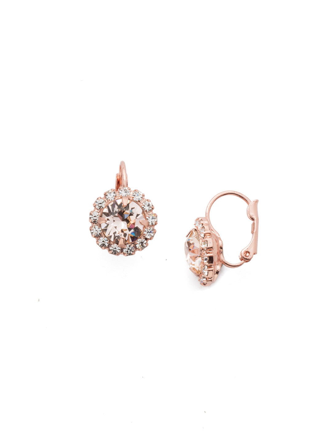 Haute Halo Stud Earrings - EDL10RGSNB