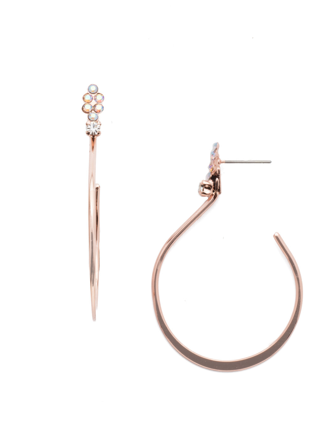 Darcie Hoop Earrings - EEN71RGROG