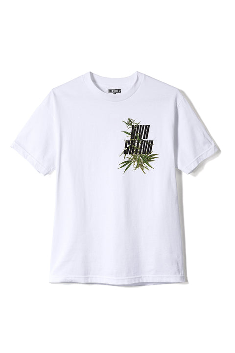 VIVA SATIVA Short Sleeve T-Shirt