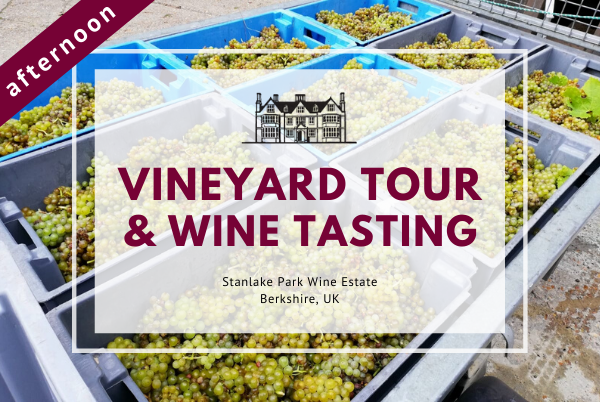 Sunday 11th October 2020 at 2 pm - Vineyard Tour & Wine Tasting
