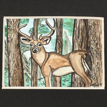Load image into Gallery viewer, Stag
