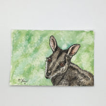 Load image into Gallery viewer, Wallaby