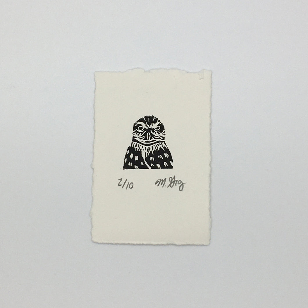 Northern Spotted Owl Mini