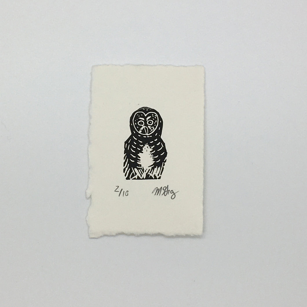 Barred Owl Mini