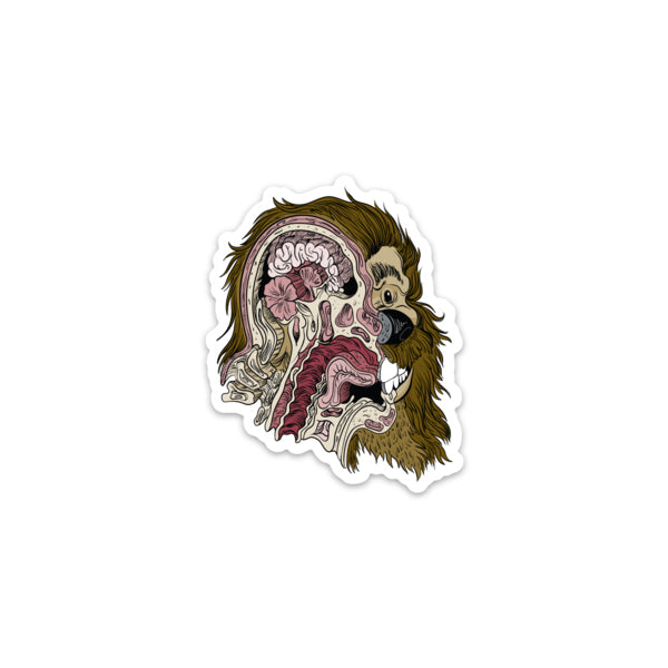 Bigfoot Anatomy Sticker