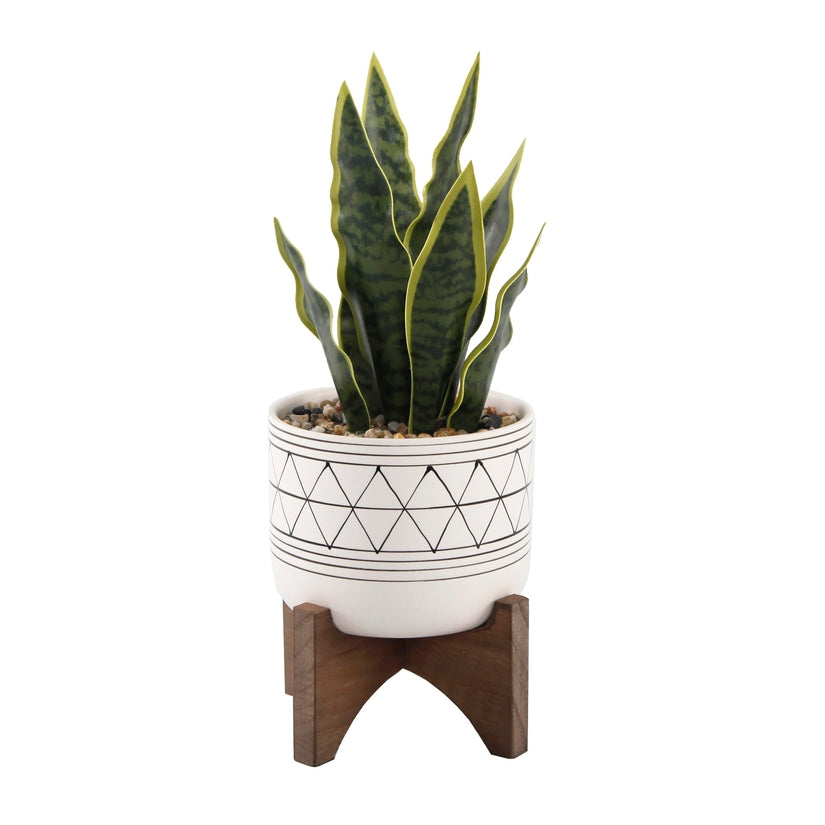 Geo Pot With Snake Plant on Stand