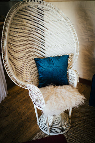 Peacock Chair Hire