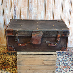 Case 2: Brown Large Suitcase