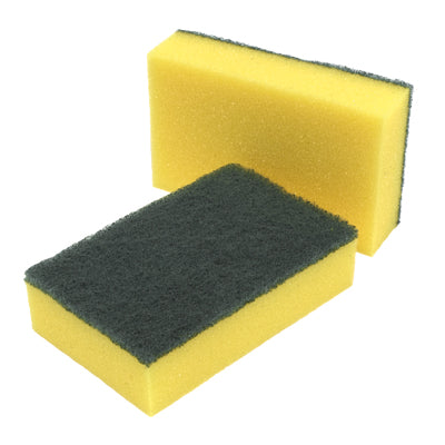 Robert Scott Scourer Sponge - Single