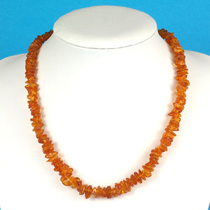 Health Necklace 18 inch Honey Baltic Amber Chips