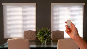 Lutron Motorized Window Treatments