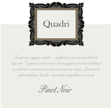 Load image into Gallery viewer, Quadri IGT Trevenezi Venice Pinot Noir