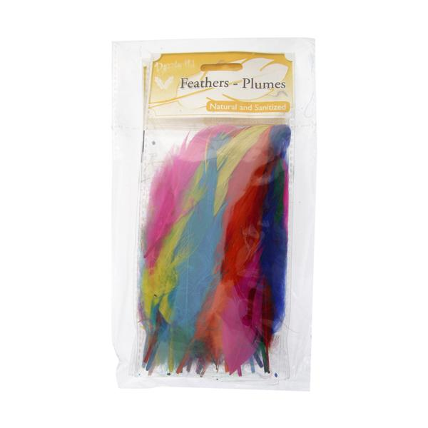 Goose Feathers Multi Mix 6g
