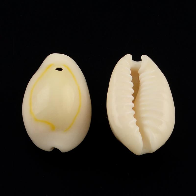 Drilled Cowrie Shells 10/pk