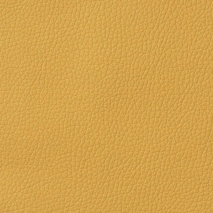 Faux Leather Gold 20x34cm Sheet