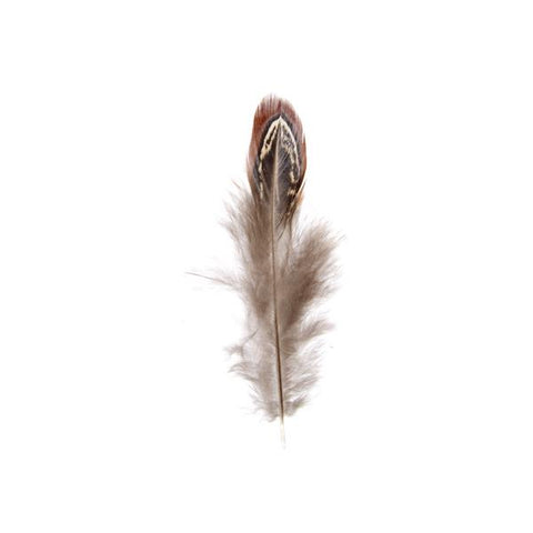 Pheasant Feathers Natural 3g