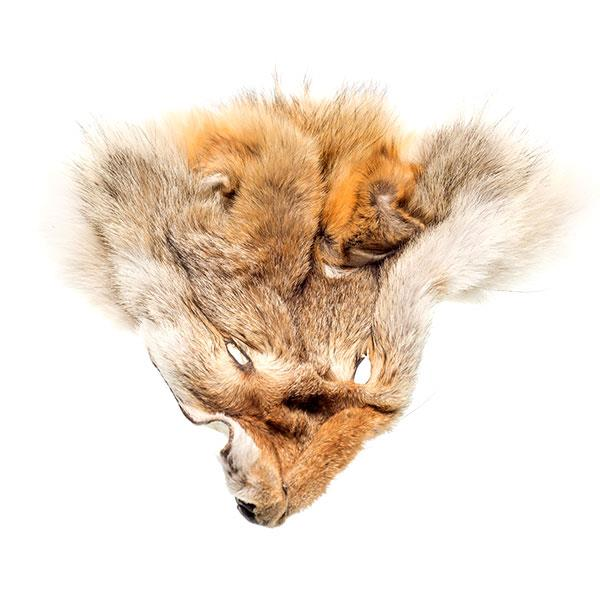 Coyote Scalp