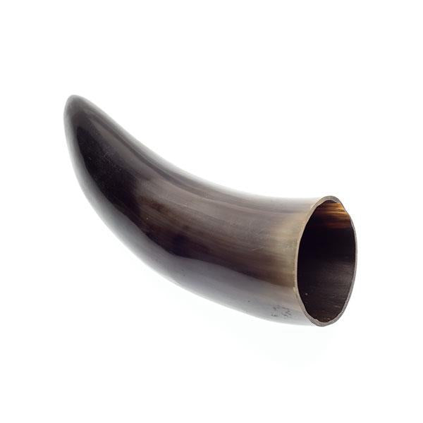 Polished Buffalo Horn