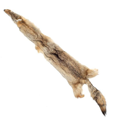 Coyote Fur Pelt