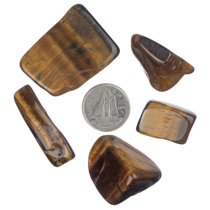 Gold Tiger Eye Tumbled Stone - Each