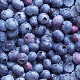 Blueberries Blue - Price Per Yard