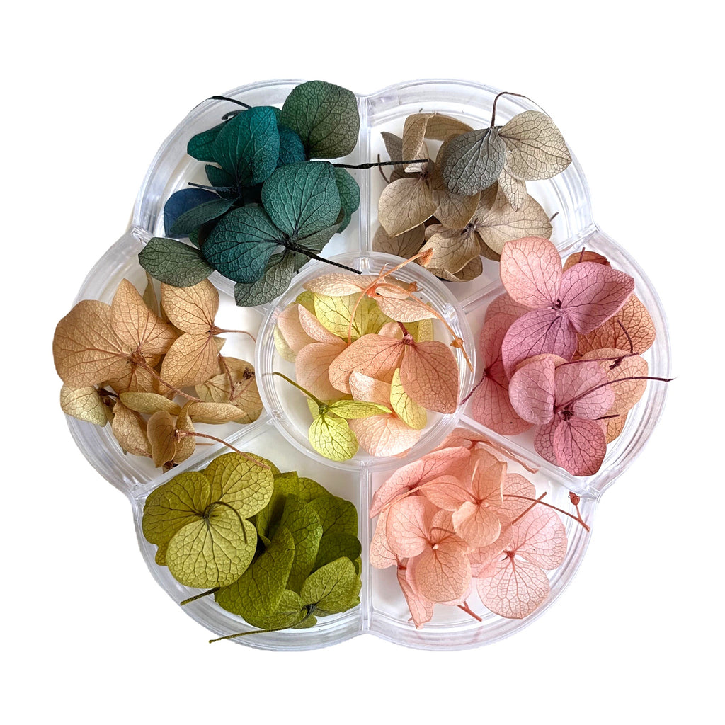 Japanese Dry Flowers Nail Art Decoration (7 Colors)