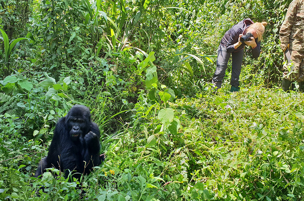Perrin on a gorilla trek in the Impenetrable National Park of Bwindi, Uganda.