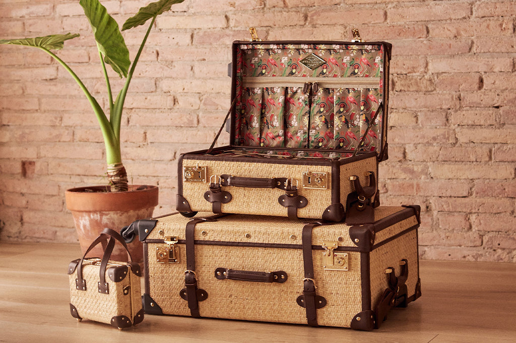 SteamLine Luggage's Explorer Collection
