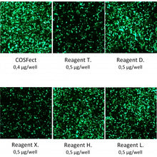 Load image into Gallery viewer, COSFect Transfection Reagent