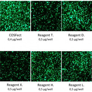 COSFect Transfection Reagent