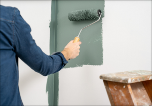 Can You Paint Over Damp?