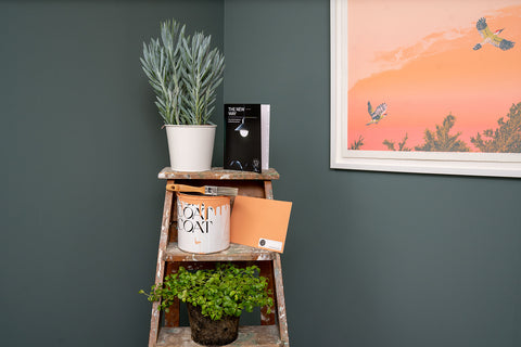 Eco-Friendly Paint Sustainable